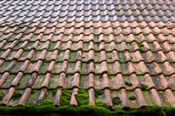 Entretien toiture Caen